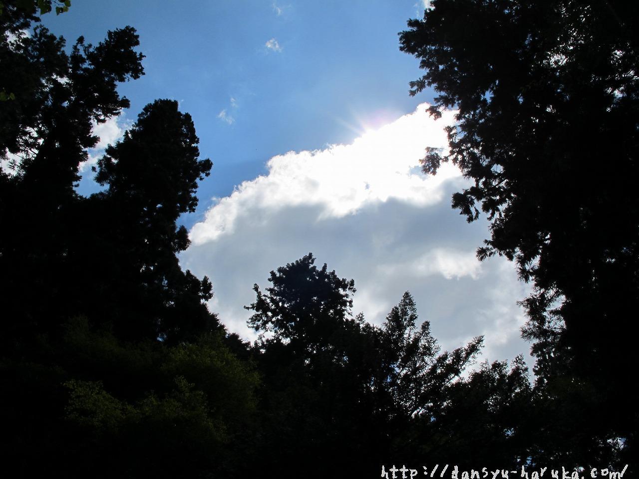 断酒主婦はるかが撮った空と雲