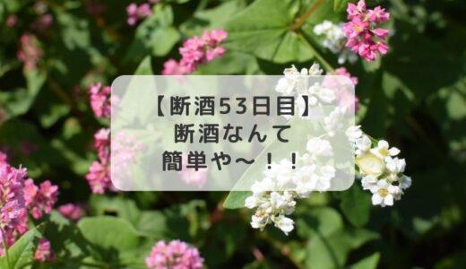 「断酒」は簡単なんや~!と叫びたい【断酒53日目】