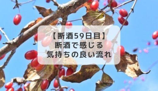 「断酒」で感じる気持ちの良い流れ【断酒59日目】