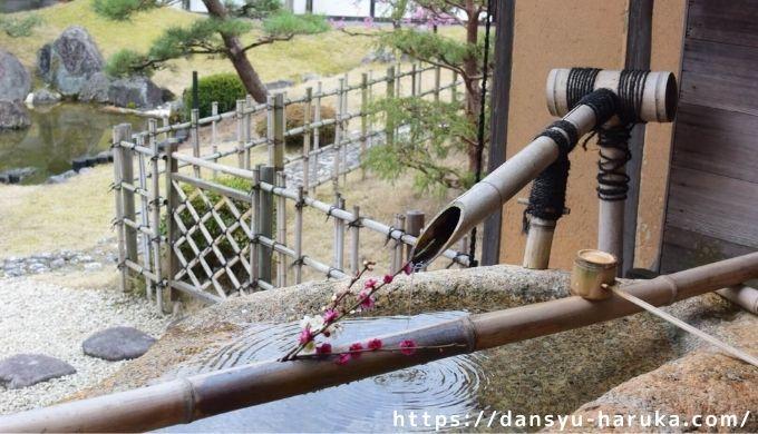 断酒主婦はるかが撮った彦根城の庭