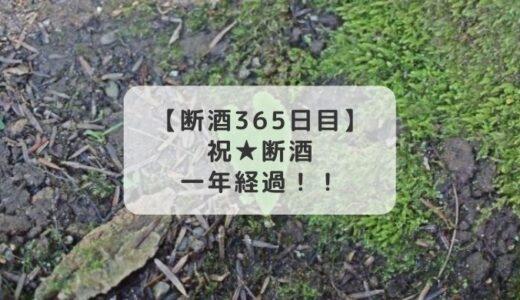 祝★断酒継続1年経過★HappyBirthday幸せな私!!【断酒365日目】
